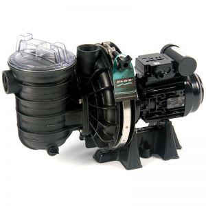 Pompe filtration piscine LA STA-RITE 5P2R /5P2R eau salée