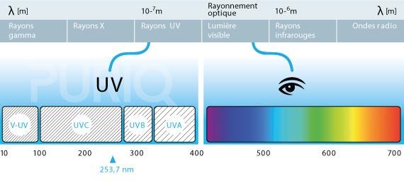 Type de rayon UV pour traitement piscine PURIQ